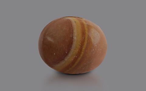 Petrified Wood - 4.53 carats