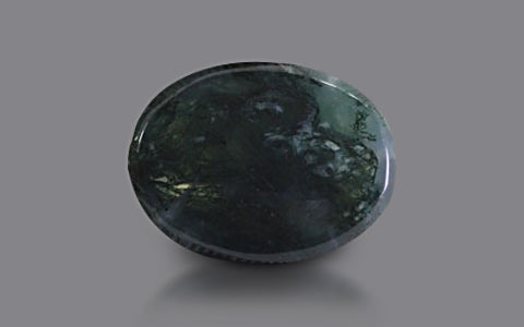 Moss Agate - 13.56 carats