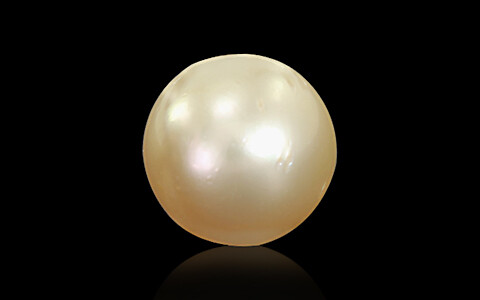 Golden South Sea Pearl - 6.63 carats