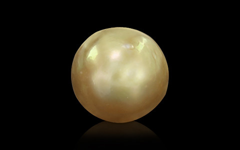 Golden South Sea Pearl - 5.16 carats