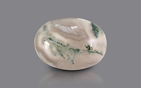 Moss Agate - 9.50 carats