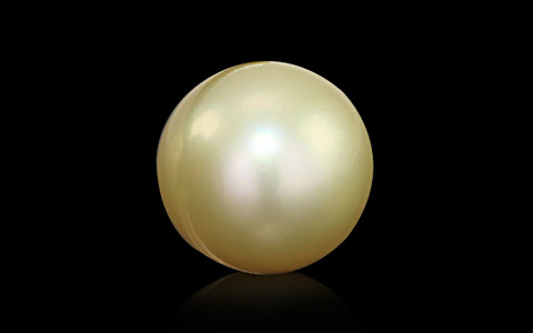 Golden South Sea Pearl - 6.92 carats