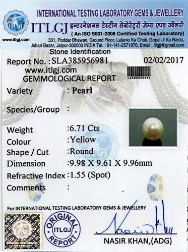 Golden South Sea Pearl - 6.71 carats