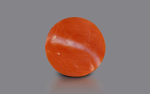 Red Coral - 5.73 carats