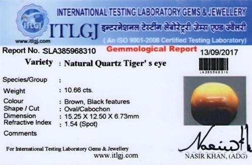 Tiger Eye - 10.66 carats