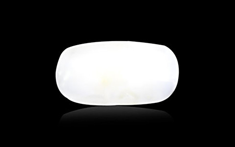 White Coral - 4.52 carats