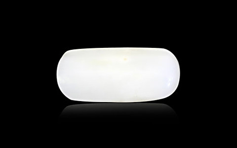 White Coral - 4.45 carats