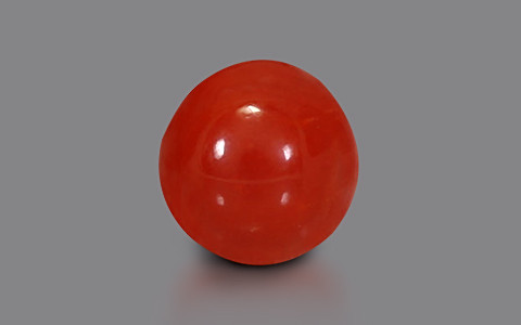 Red Coral - 2.30 carats