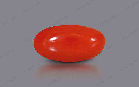 Red Coral - 5.59 carats