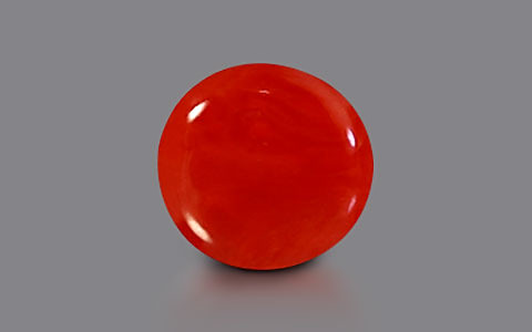 Red Coral - 2.19 carats