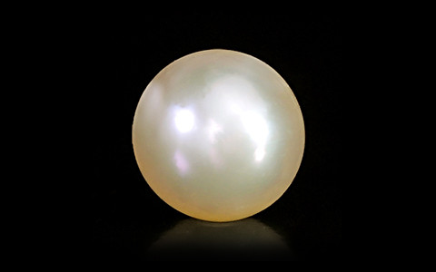 Golden South Sea Pearl - 6.22 carats