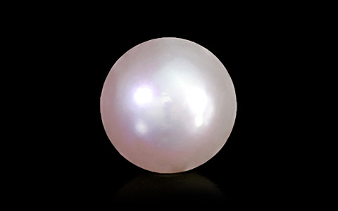 Golden South Sea Pearl - 6.60 carats