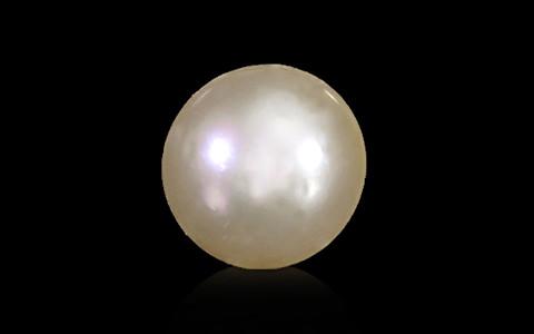 South Sea Pearl - 6.63 carats