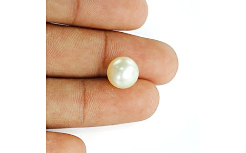 South Sea Pearl - 8.99 carats