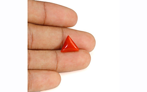 Red Coral - 3.94 carats