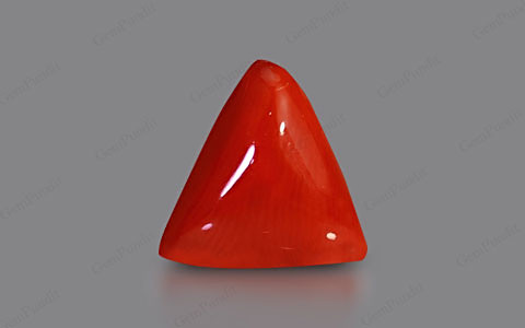 Red Coral - 4.01 carats