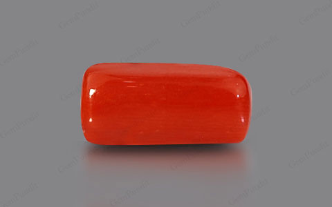 Red Coral - 5.76 carats