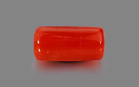 Red Coral - 7.22 carats