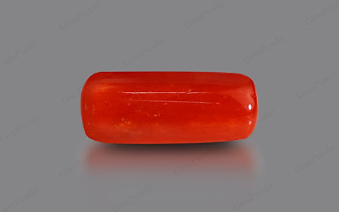Red Coral - 5.31 carats