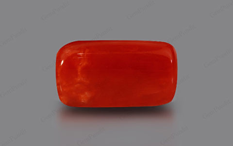 Red Coral - 7.42 carats