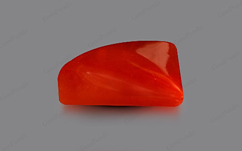 Red Coral - 4.91 carats