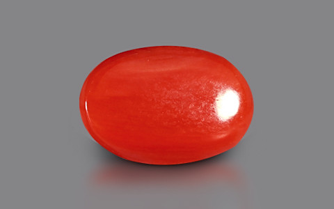 Red Coral - 3.02 carats