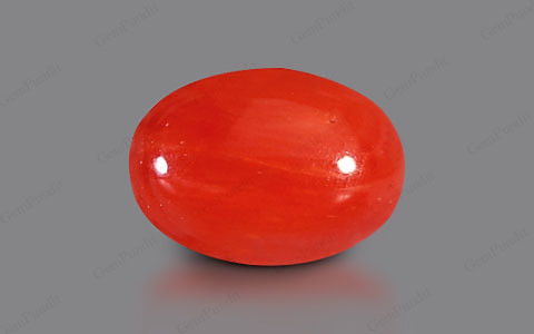Red Coral - 3.93 carats