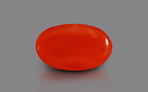 Red Coral - 3.07 carats