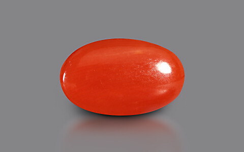 Red Coral - 3.88 carats