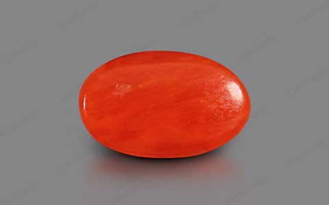 Red Coral - 4.05 carats