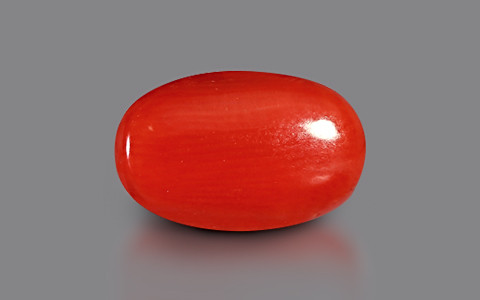 Red Coral - 3.84 carats