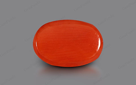 Red Coral - 3.68 carats