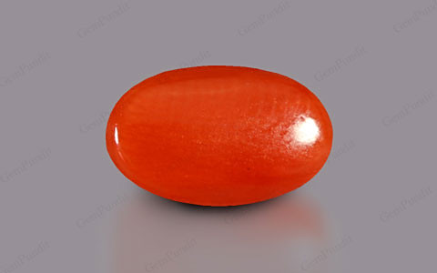 Red Coral - 3.57 carats