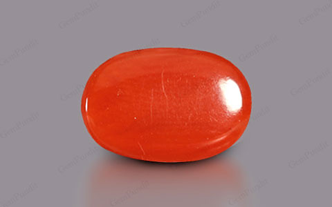 Red Coral - 3.86 carats