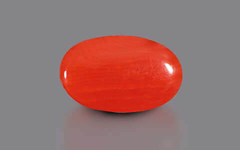Red Coral - 3.11 carats