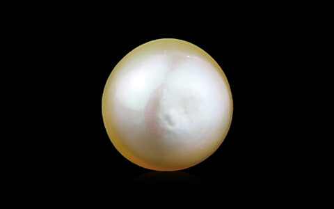 Golden South Sea Pearl - 5.37 carats