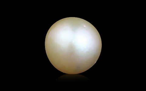Golden South Sea Pearl - 2.75 carats