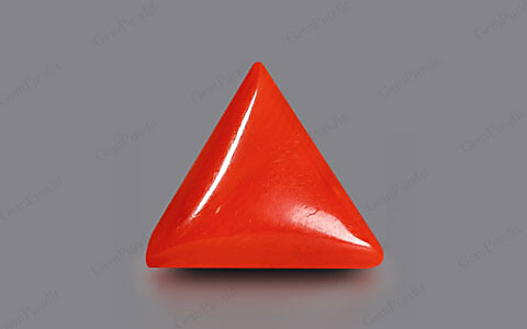 Red Coral - 2.50 carats