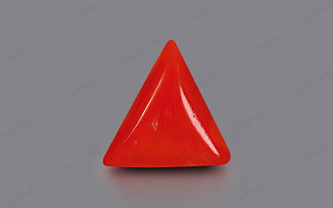 Red Coral - 2.29 carats