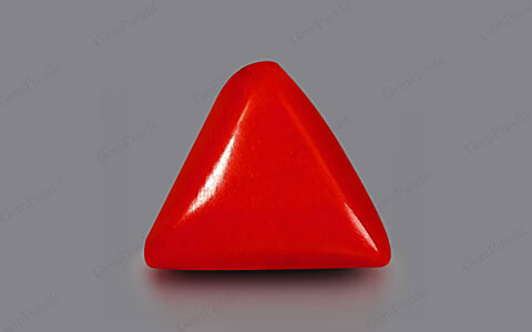Red Coral - 2.55 carats