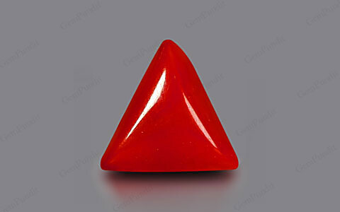 Red Coral - 2.42 carats