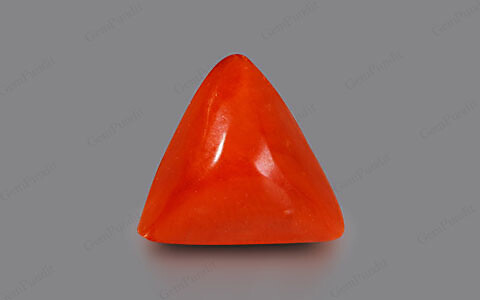 Red Coral - 2.47 carats