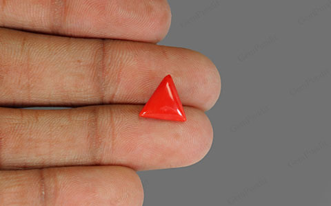 Red Coral - 2.57 carats