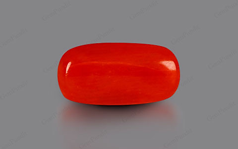 Red Coral - 2.63 carats