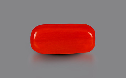 Red Coral - 2.15 carats