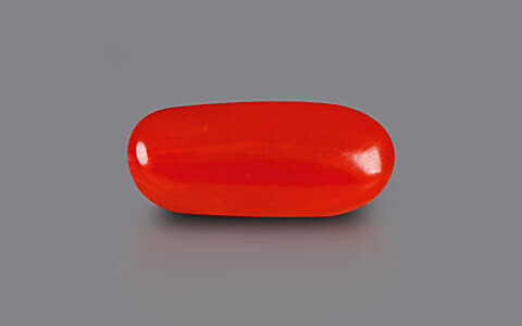 Red Coral - 2.36 carats