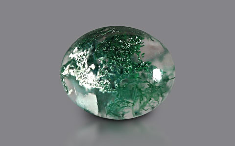 Moss Agate - 7.11 carats
