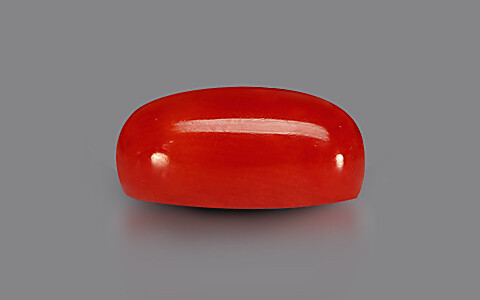 Red Coral - 3.25 carats