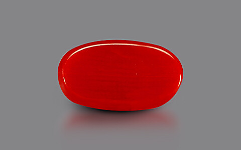 Red Coral - 3.31 carats