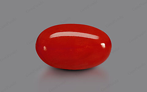 Red Coral - 4.75 carats